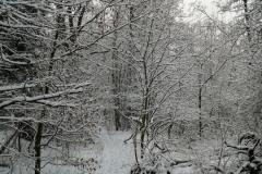 moelln-im-winter-03